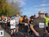 viii-maraton-trzezwosci-radom-27-pazdziernik-2013-7