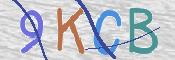 OBRAZ CAPTCHA