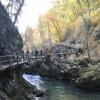 Biegiem Radom w Słowenii – zwiedzamy Triglavski Park Narodowy