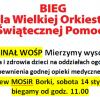 14 stycznia 2017 - Borki - 25 Finał WOŚP